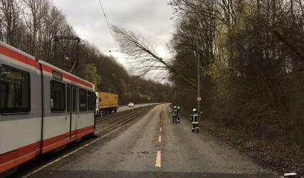 Einsatz im Rahmen des Sturmes Friederike in Bochum. Foto: Feuerwehr Bochum